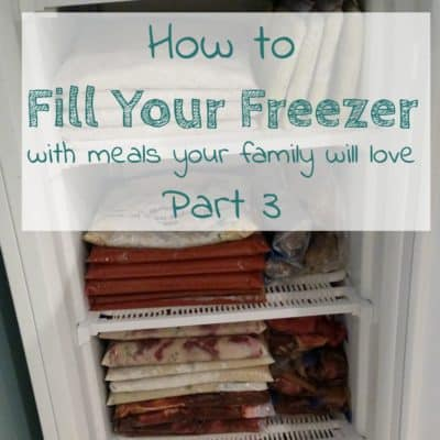 Freezer Meals – When You Can't Find the Time