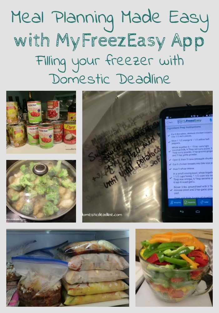 Meal Planning Made Easy with MyFreezEasy App