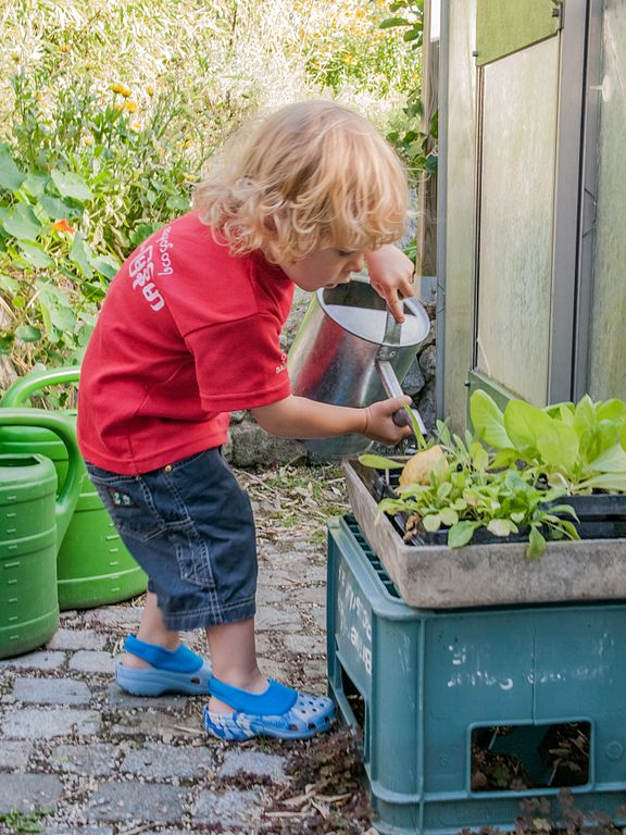 How To Keep Your Kids Happy in the Garden This Summer