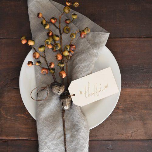 Thanksgiving Black Friday Specials - Domestic Deadline